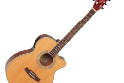 Tanglewood Acoustic Guitar DBT