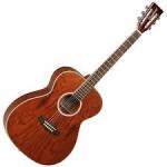 Tanglewood Acoustic Guitar TFA