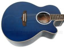 Tanglewood Acoustic Guitar TSF
